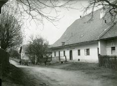 Trámky, moruše, 1930