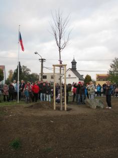 Výsadba stromu svobody